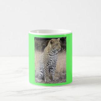 Katzen-Safari-Afrika-Tier-Leopard Teehaferl