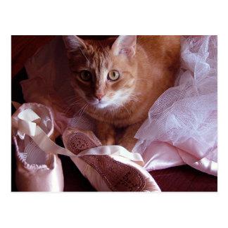 Katzen-und Ballett-Pantoffel Postkarte