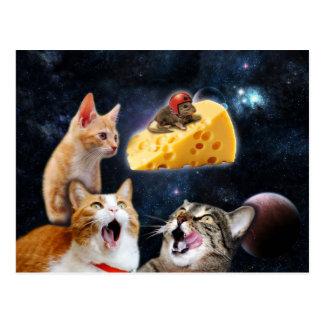 Katzen und die Maus auf dem Käse Postkarte