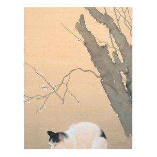 Katzen-und Pflaumen-Blüten durch Hishida Shunso Postkarte