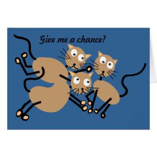 Katzen-Valentinsgruß Karte