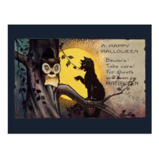 Katzen-warnende Eulen-Vintage Halloween-Postkarte