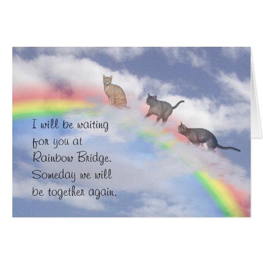 Katzen warteten an der Regenbogen-Brücke Grußkarte
