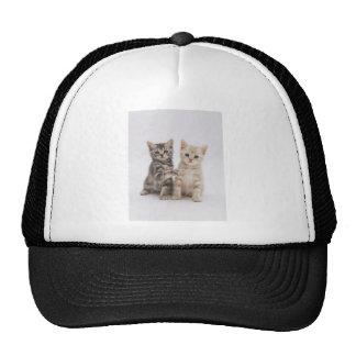 Katzen-Willkommen Retrokultmützen
