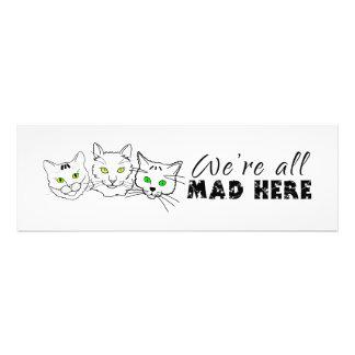 Katzen - wir sind alle hier wütend kunst foto