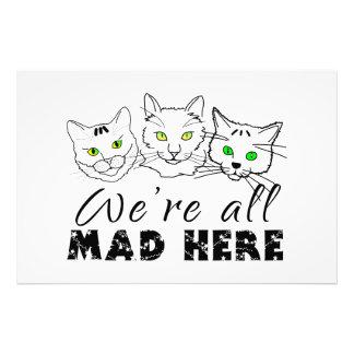 Katzen - wir sind alle hier wütend photo druck