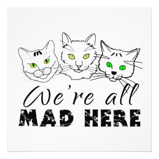 Katzen - wir sind alle hier wütend photographischer druck