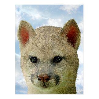 Katzen-Wolf - Mult-Produkte Postkarte