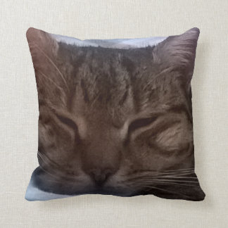 Katzen-Wurfs-Kissen Kissen