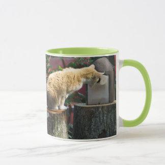 Katzenliebhaber… ist jedermann Zuhause?  Tasse
