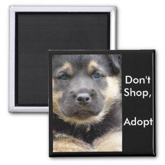 Kaufen Sie nicht adoptieren! shep Magneten Quadratischer Magnet