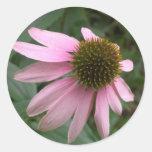 Kegel-Blumenaufkleber Runder Aufkleber