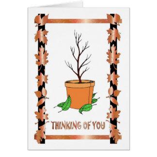 Kein Blätter auf der Topf-Pflanze Karte