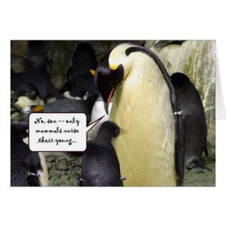 Kein freier Mittagessen-Pinguin Karte
