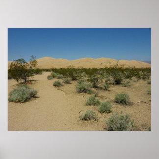 Kelso-Dünen am Mojave-Nationalpark Poster