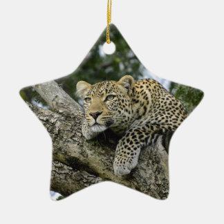 Kenia-Leopard-Baum-Afrika-Safari-tierische wilde Keramik Ornament