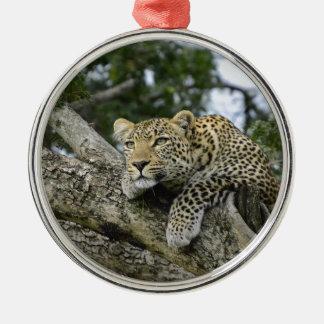 Kenia-Leopard-Baum-Afrika-Safari-tierische wilde Silbernes Ornament