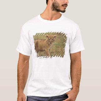 Kenia. Löwe CUB (Panthera Löwe) T-Shirt