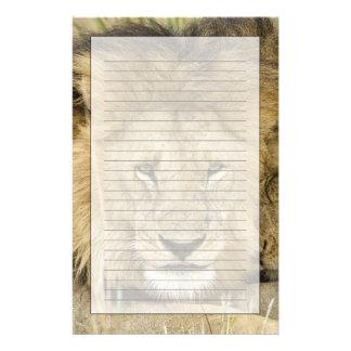 Kenia, Masai Mara. Zwei Löwen, die Gesicht zu Briefpapier