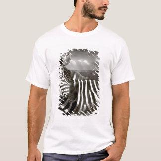 Kenia. Schwarz u. Weiß von Zebra und von Ebene T-Shirt