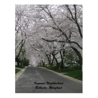 Kenwood Nachbarschaft, Bethesda, Maryland Postkarte