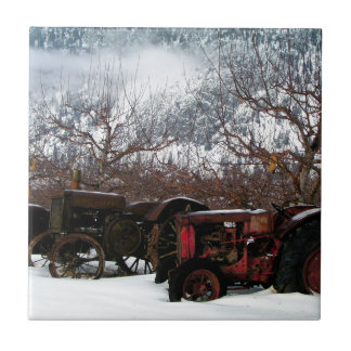 Keremeos Obstgarten im Winter Fliese