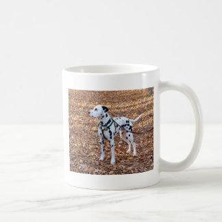 Kevin der Dalmatiner Kaffeetasse
