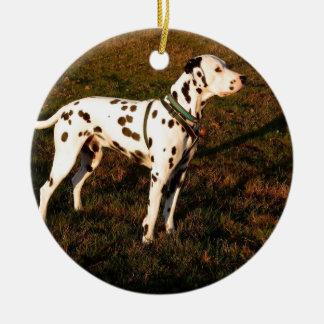 Kevin der Dalmatiner Keramik Ornament
