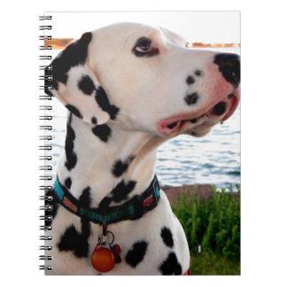 Kevin der Dalmatiner Notizblock