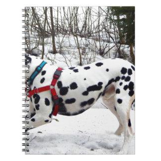 Kevin der Dalmatiner Spiral Notizblock