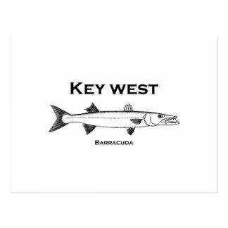 Key West-Barracuda Postkarte