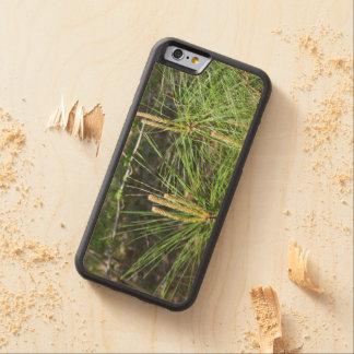 Kiefern-Nadeln Bumper iPhone 6 Hülle Ahorn