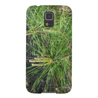 Kiefern-Nadeln Galaxy S5 Cover