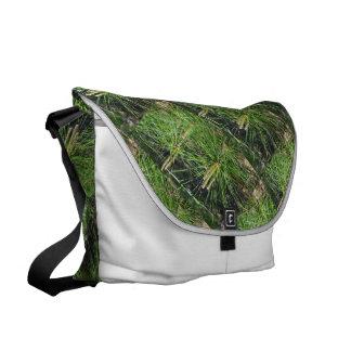 Kiefern-Nadeln Kurier Taschen