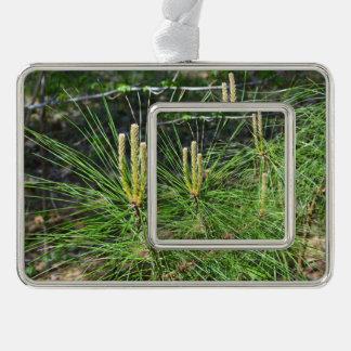 Kiefern-Nadeln Rahmen-Ornament Silber