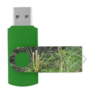 Kiefern-Nadeln USB Stick