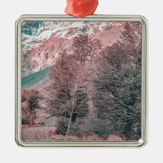 Kies-leere Straße - Parque Nacional Los Glaciares Quadratisches Silberfarbenes Ornament