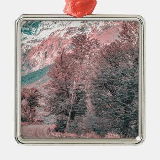 Kies-leere Straße - Parque Nacional Los Glaciares Silbernes Ornament