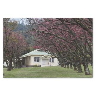 Kirchen-und Kirschblüten Seidenpapier
