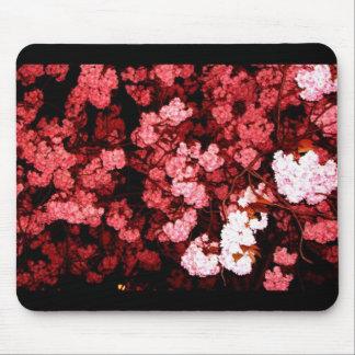 Kirschblüte allabendlich mousepad