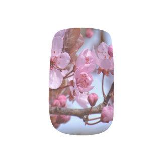 Kirschblüte Asien Minx Nagelkunst