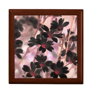 Kirschblüte Erinnerungskiste