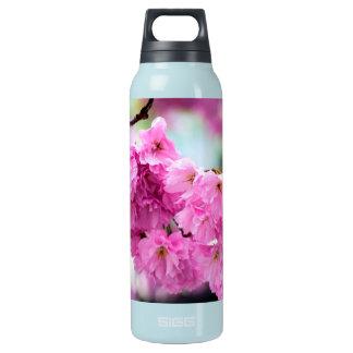 Kirschblüte Kirschblüte Isolierte Flasche