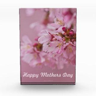 Kirschblüte-Kirschblüten-Mutter-Tag kardieren für Auszeichnung