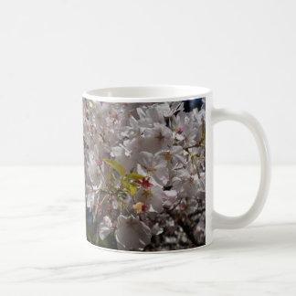 Kirschblüte-Kirschblüten-Tasse Kaffeetasse