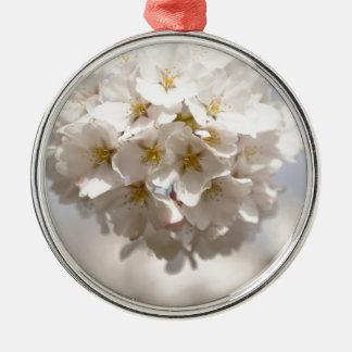 Kirschblüte Silbernes Ornament