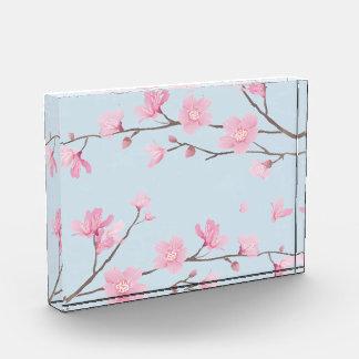 Kirschblüte - Transparent-Hintergrund Auszeichnung