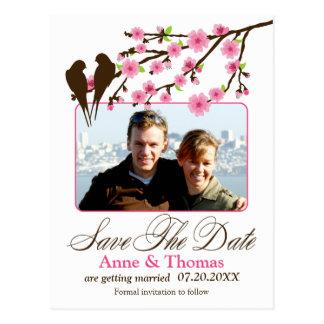 Kirschblüte und Liebe-Vogel-Foto Save the Date Postkarte