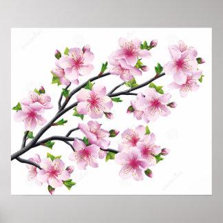 Kirschblüten 4 poster