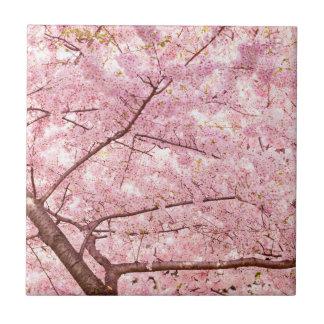 Kirschblüten-Bäume Fliese